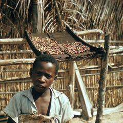Young Boy with Drying Coffee Beans