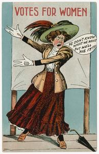 We don't know what we want, suffrage postcard