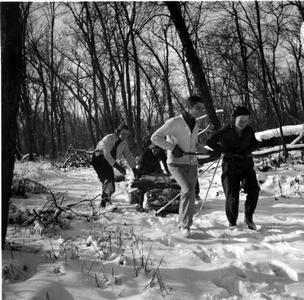 Starker, Betty, Nina, and Carl Leopold pulling wood sled