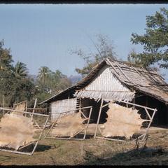 Tai Dam village near Luang Prabang : skins drying