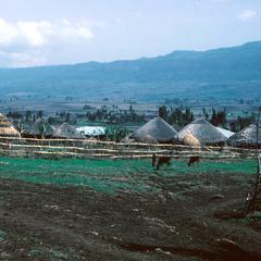 A New Village