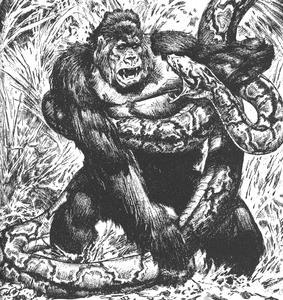 Gorilla Snake Print