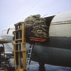 Airplane loading rice