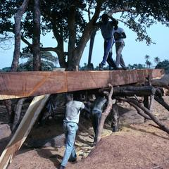 Sawing a Tree by Hand