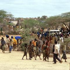 Refugees Collecting Food in Camp near Gedo