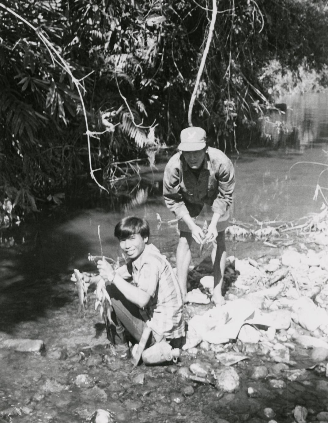 Display of fish caught in a river in Houa Khong Province