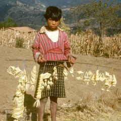 Wheat ornaments, west of Nahuala