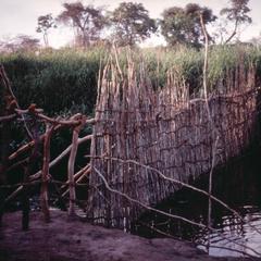 Fishing Weir at Kaputa