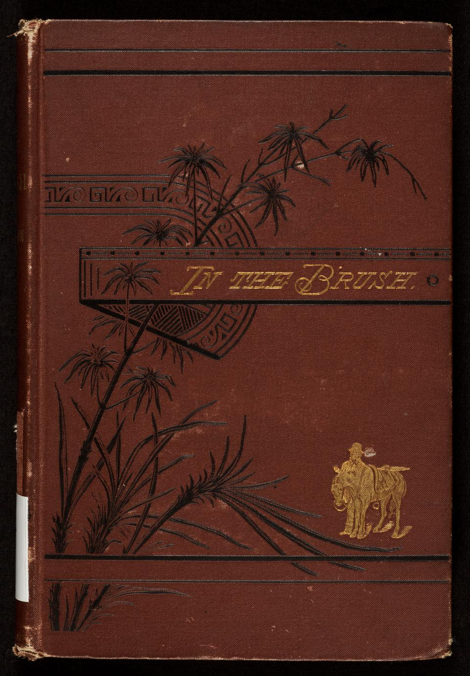 In the brush ; or, Old-time social, political, and religious life in the Southwest (1 of 3)