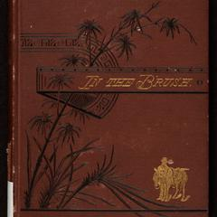 In the brush ; or, Old-time social, political, and religious life in the Southwest