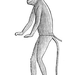 The Patas, From an Egyptian Sculpture