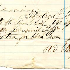 Bill from H.L. Topping to Nathaniel Dominy VII, 1879