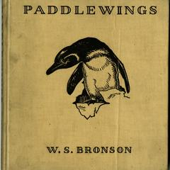 Paddlewings, the penguin of Galápagos
