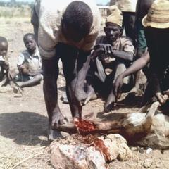 Sacrificing a Goat at an Ancestor Shrine in Tumu