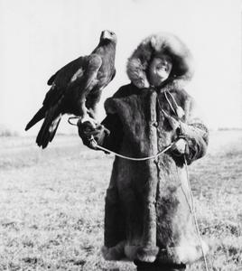 Fran Hammerstrom and her golden eagle