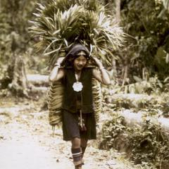 Akha woman carrying palm fronds to her village to make thatch in Houa Khong Province