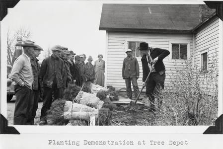 Tree planting demonstration