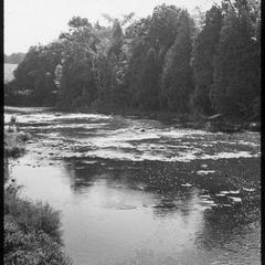 Unidentified water scene