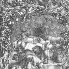 Large Group Print