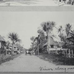 A view of a native village with houses and trees