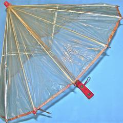 Clear plastic umbrella