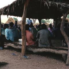 Villagers at Meeting Seated on Raised Platform (Bantaba) Under Shade Tree