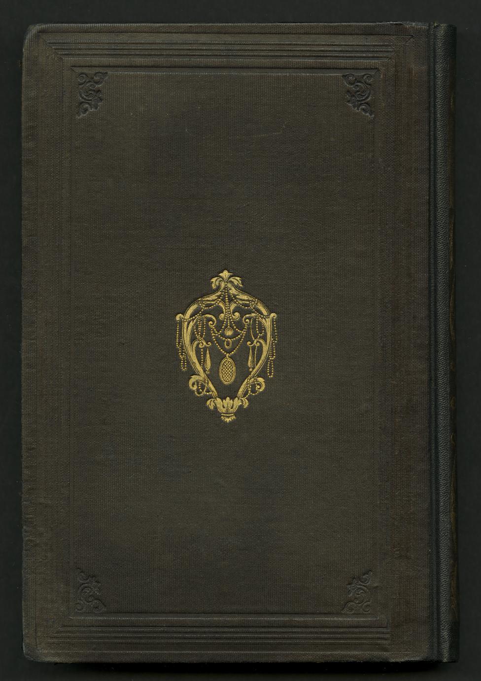 The diosma, a perennial (1 of 2)