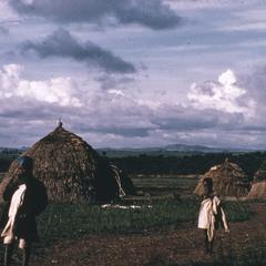 Vom landscape