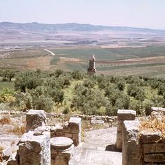 Mosaics in Roman Ruins at Dougga