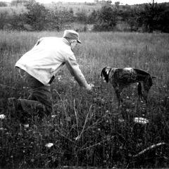 Training dog, Gus, near the Shack, ca. 1944