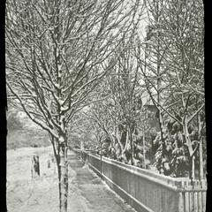 Winter - Ann Street and Prairie Avenue
