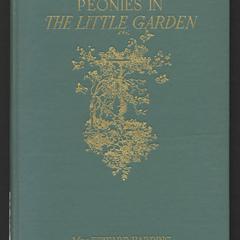 Peonies in the little garden