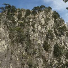 Volcanic plug of Cerro Tequila