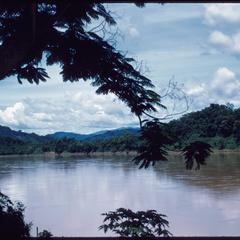Mekong River view through vegetation, high water in summer