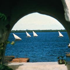 Dhows (Sailboats) Sailing along Waterfront