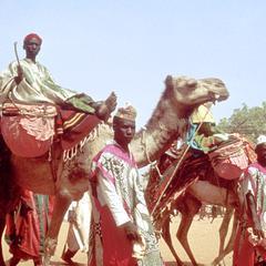Emir's Musicians at Big Sallah Celebration