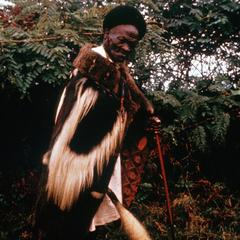 Kikuyu Healer