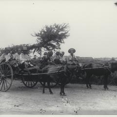Peasants traveling in bull carts, Manila, early 1900s