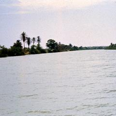 The River Gambia