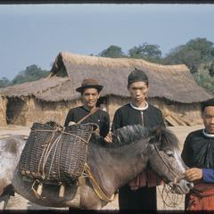 Hmong (Meo) with ponies