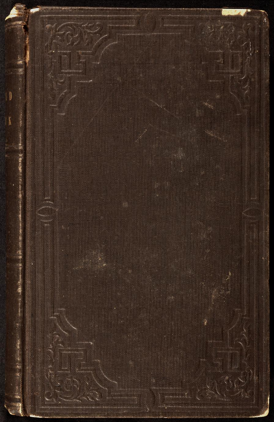 Wild Jack ; or, The stolen child : and other stories : including the celebrated Magnolia leaves (1 of 2)