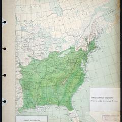 Hicoria alba (Linnaeus) Britton - mockernut hickory