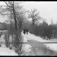 Through park - winter