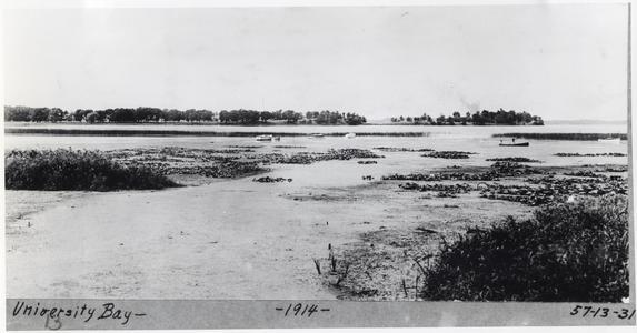 University Bay, 1914