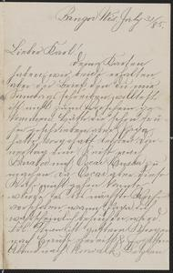 [Letter from Hanna Sternberger to her brother Karl Sternberger, July 31, 1885]