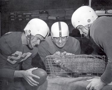 Football Players and Badger Mascot