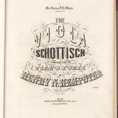 Viola schottisch