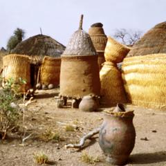 Fences Made of Reed and Mud Clay Granaries in Northern Nigeria