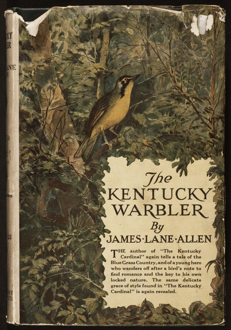 The Kentucky warbler (1 of 3)