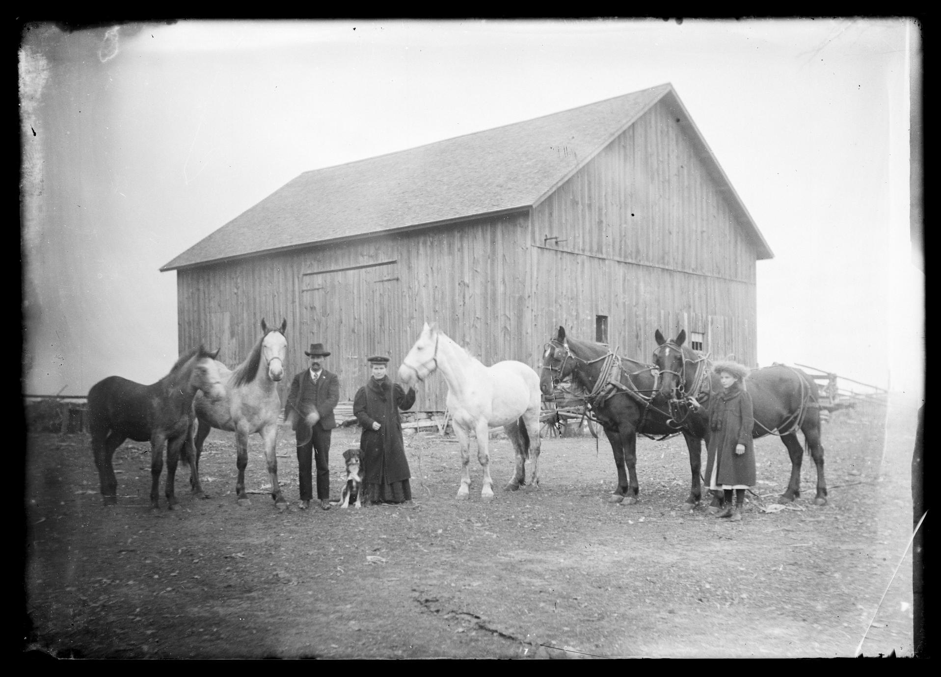 Barn and family with horses
